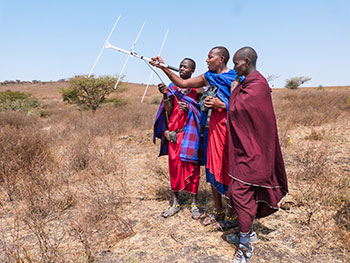 Kopelion ilchokutis tracking lions